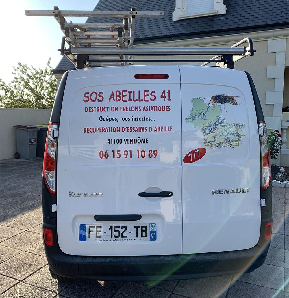 lutter contre les guêpes dans le Loir-et-Cher | SOS Abeilles 41