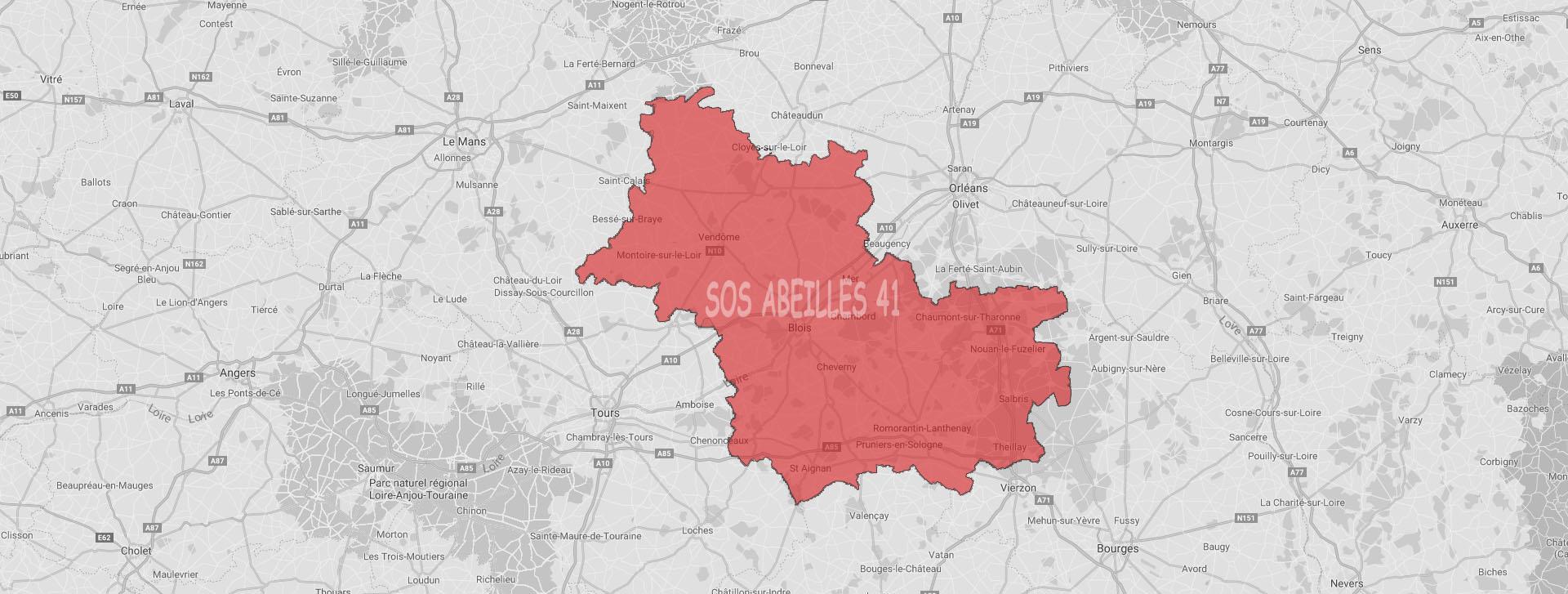 lutter efficacement contre les rongeurs dans le Loir-et-Cher | SOS Abeilles 41